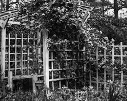 Garden arbor, 1930s