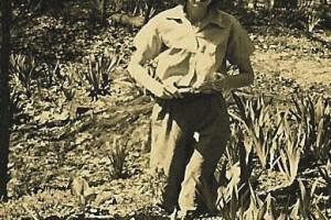 Eudora kneeling among irises in the Woodland Garden, 1940s.