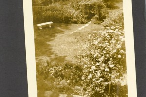 Steps leading to garden bench and arbor in Upper Garden, April 1927